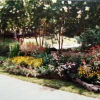 Creating a Perennial Garden