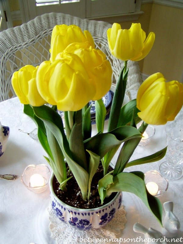 Yellow Tulips in a Blue and White Table Setting
