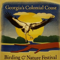Georgia's Colonial Coast Birding and Nature Festival