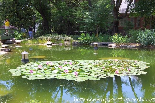Garden Tour of Arthur Blank's Garden, Atlanta Botanical Gardens, Gardens for Connoisseurs Tour