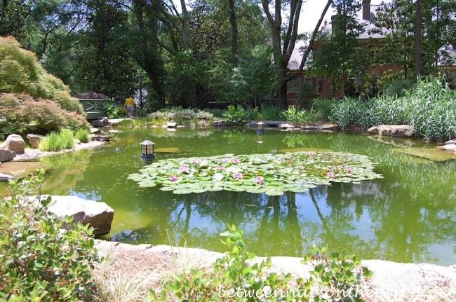Atlanta Botanical Garden Tour 2016 Garden Ftempo