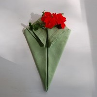 Napkin Folding Tutorial: The Flower Basket