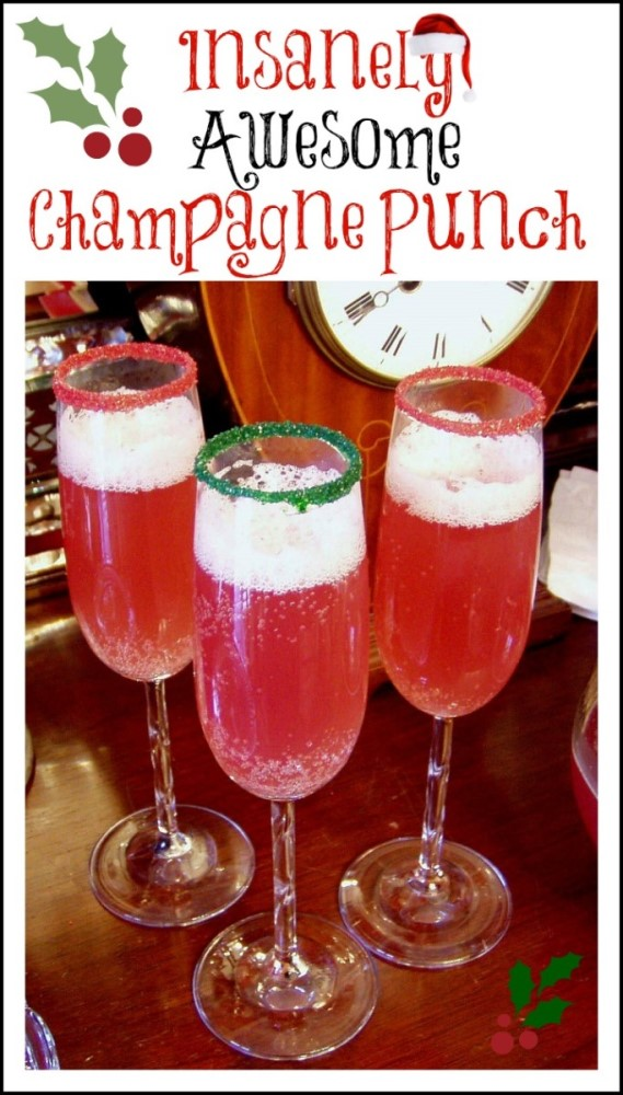 Cranberry Christmas Punch.Champagne Punch For Christmas Or New Year S