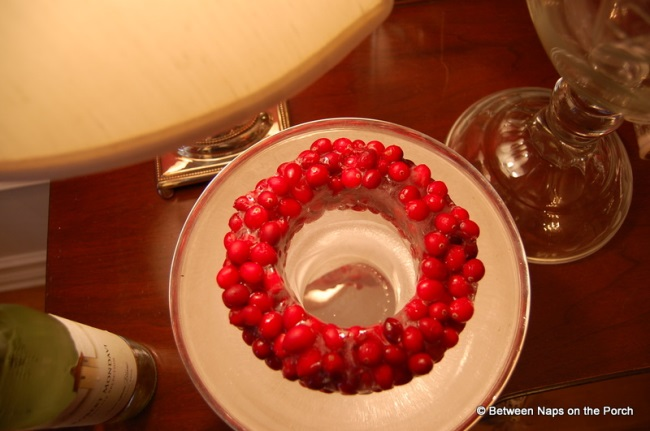 Make a Wine Ice Chiller with Cranberries 1