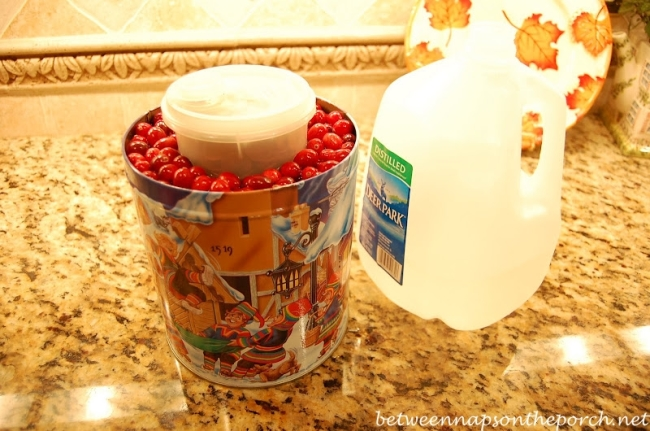 Make a Wine Ice Chiller with Cranberries 10_wm