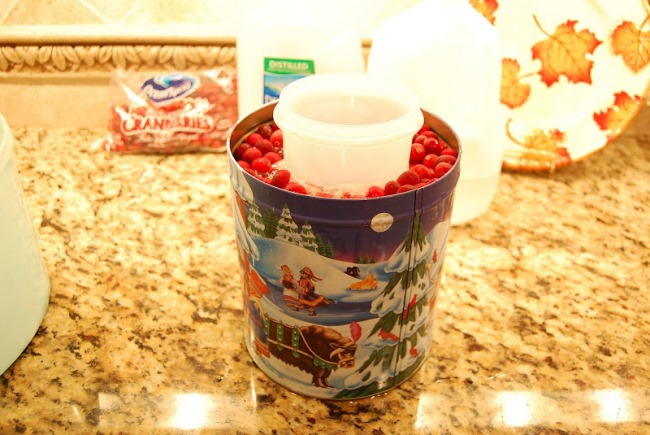 Make a Wine Ice Chiller with Cranberries 5