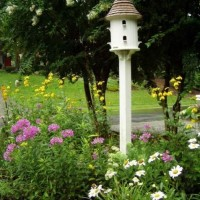 A Dovecote in the Garden
