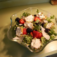 Summertime Salad: Arugula with a Fresh Berry Dressing