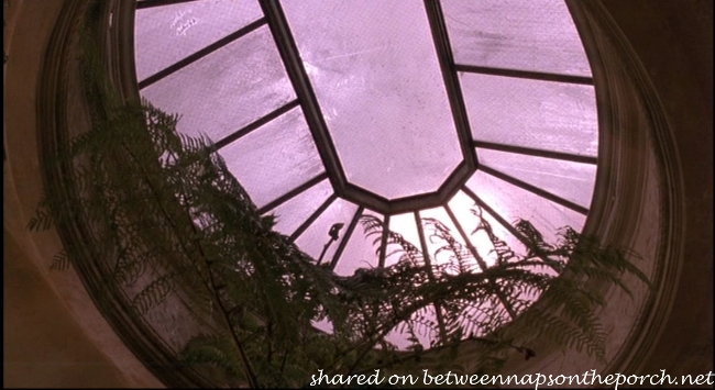 Greenhouse in Movie, Green Card 1