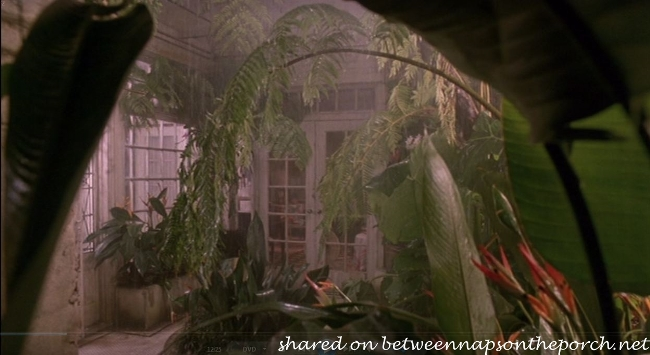 Greenhouse in Movie, Green Card
