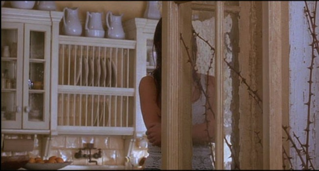 Kitchen and Victorian Home in Practical Magic Movie