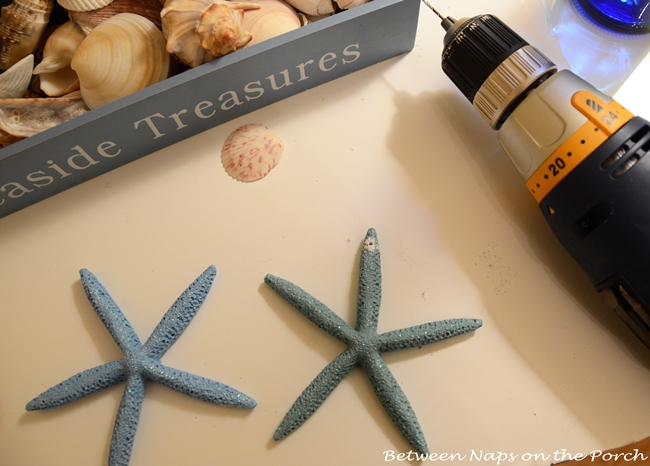 Starfish for Beach Craft