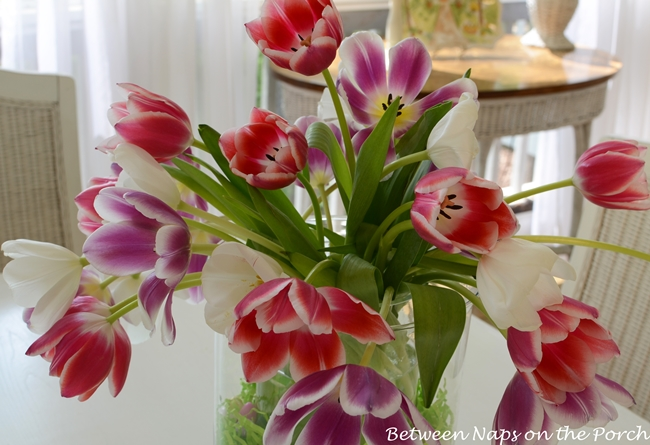 Tulips in a DIY Double-Bowl Vase Hurricane, Pottery Barn Knock-off