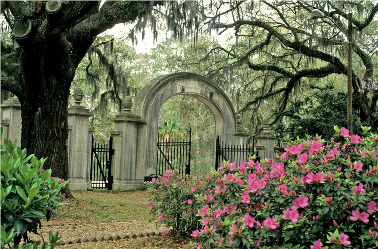 Wormsloe for House tours in savannah ga