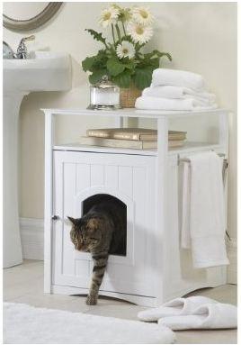 Litter Box Solutions