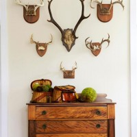 Decorating with Deer Heads and Antlers, Real and Whimsical
