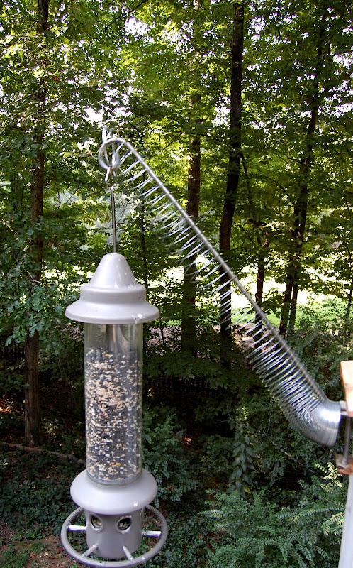 squirrels to wordpress feeder wpbirdseed bird review binoculars of hanging keep birdseed out open how choice birds in platform