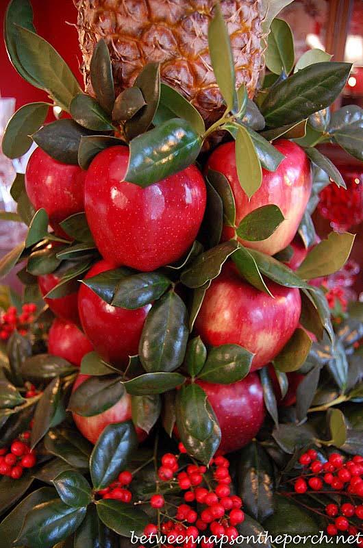 Colonial Williamsburg Apple Tree