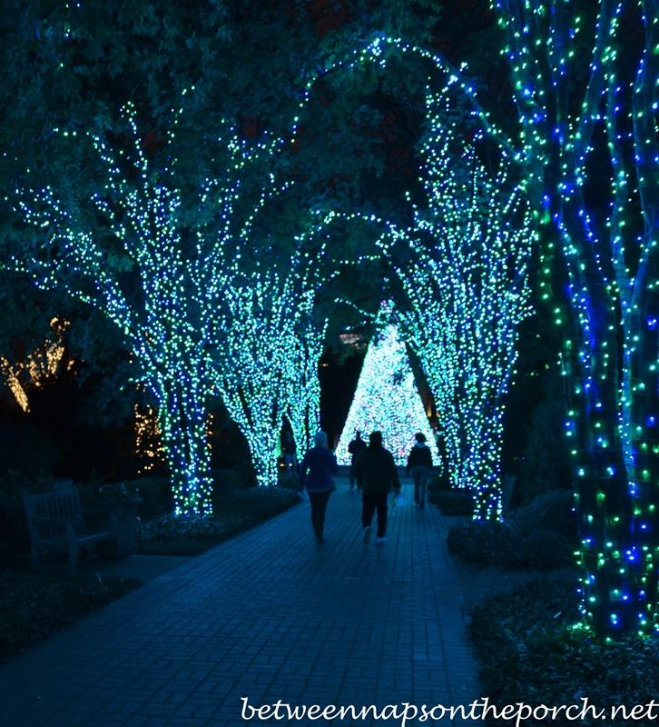 Atlanta Botanical Gardens Christmas Garden Lights Holiday Nights