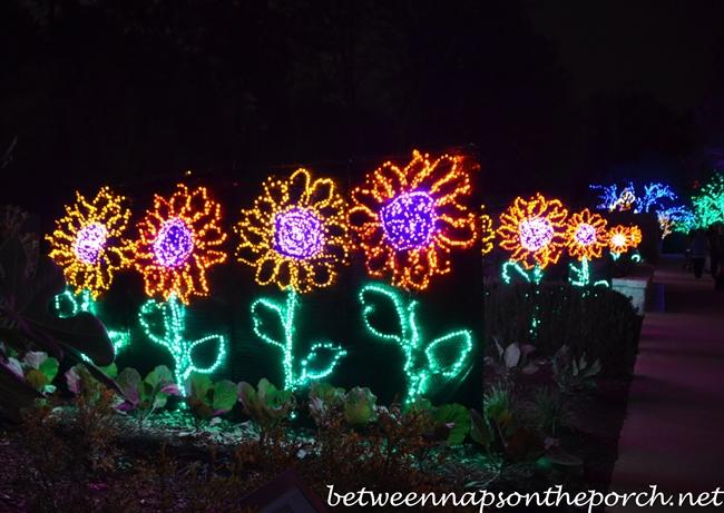Garden Of Lights Botanical Gardens Botanical Garden Garden Traveler Page 2 Light Show Rotary