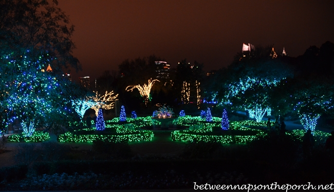 atlanta botanical garden looking - Atlanta Botanical Garden Lights