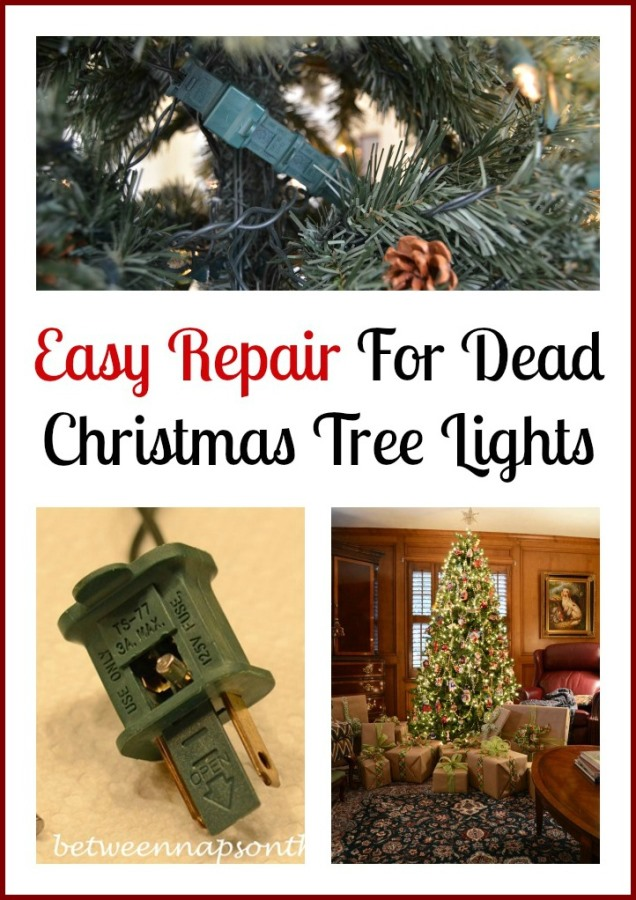 Easy Repair for Dead Christmas Tree Lights
