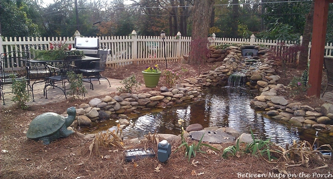 Landscape Yard with Pond and Entertaining Dining Area