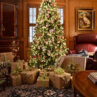 A Plaid Christmas & Lighting the Christmas Trees Via Remote