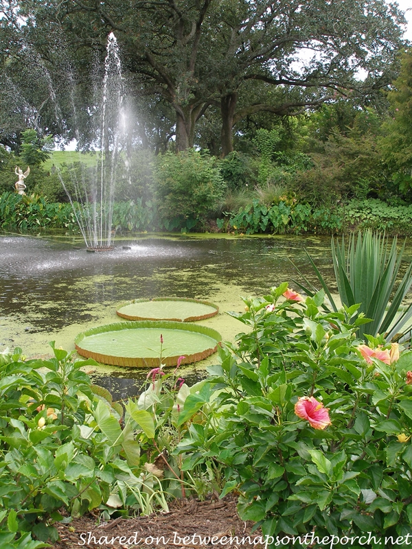 Houmas House Plantation Gardens with Pond