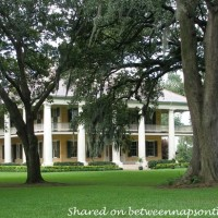 Houmas Plantation where Hush, Hush Sweet Charlotte was Filmed 1
