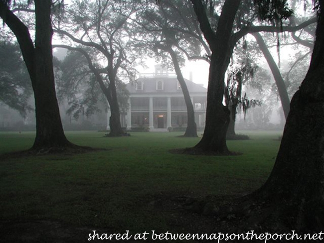 Houmas House Plantation House in Mist
