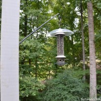 Install a Long Swing-Arm Hook for Hanging Plants or Bird Feeders