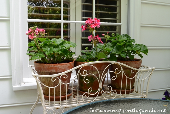 Decorating the Deck with Flowers for Spring and Summer
