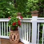 Fill Those Summer Pots and Planters Without Blowing the Budget