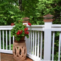Garden Seat with Geranium on Deck