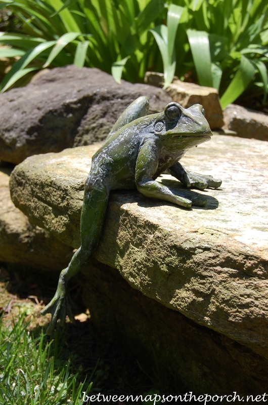 Frog Sculpture in the Garden