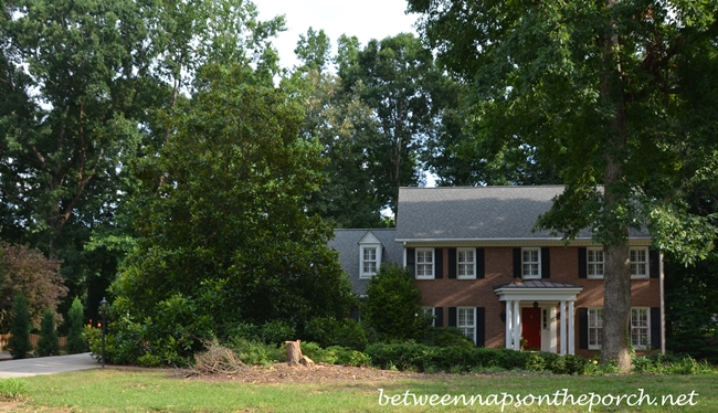 Front Yard Landscape Makeover 5