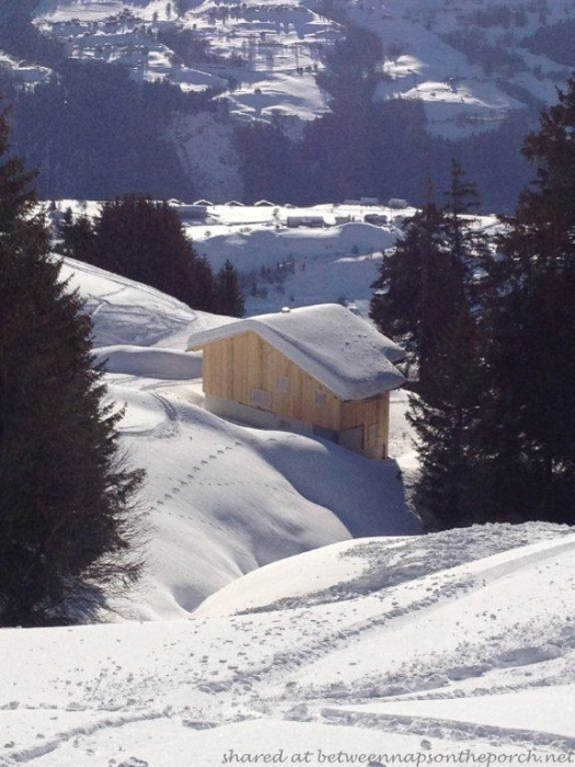 Ski Cabin in Switzerland