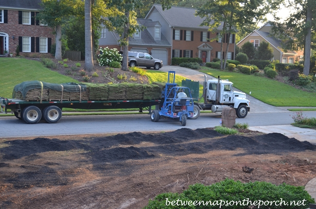 Zeon Zoysia Sod Being Delivered