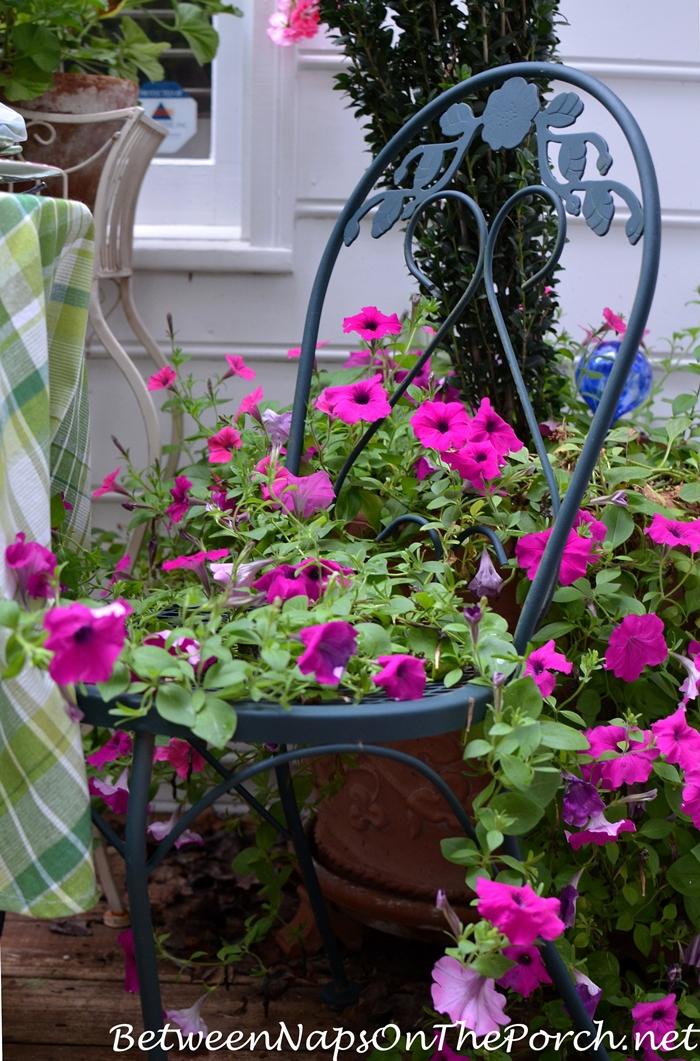 Dining With Petunias, A Garden Tablescape