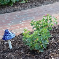 Adding Color and Whimsy to the Garden