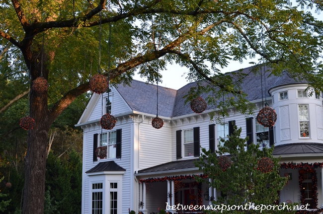 Decorate Trees with Lights for Halloween