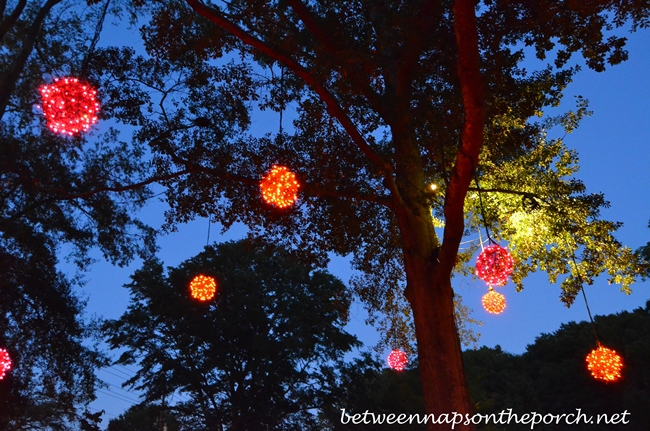 Lighting Trees for Halloween
