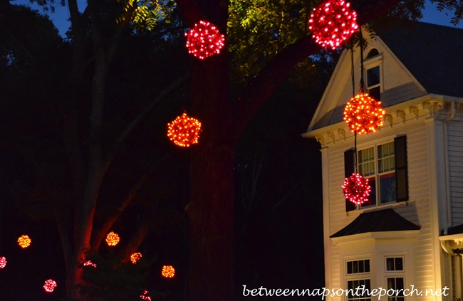 Lighting the Trees for Halloween
