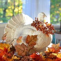 Ideas and Inspiration for Your Thanksgiving Celebration