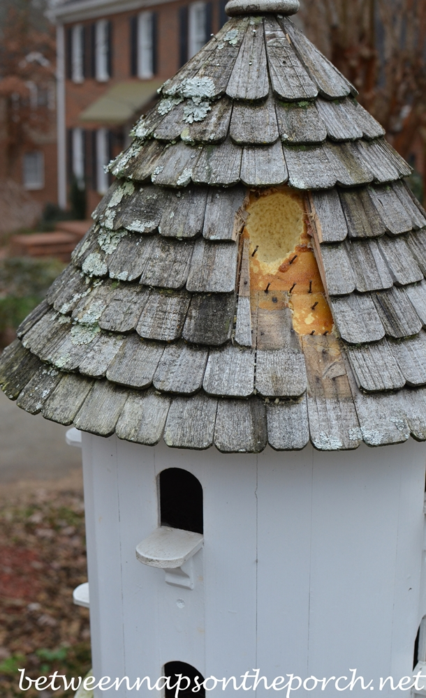 Dovecote with Woodpecker Damage