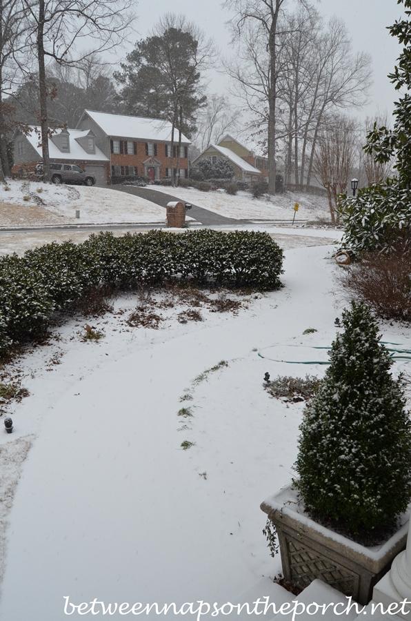 Snow in Georgia3