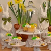 Spring Dessert Buffet for An Outdoor Party