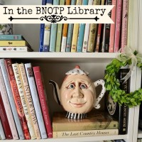 Something New! What's In the BNOTP Library?