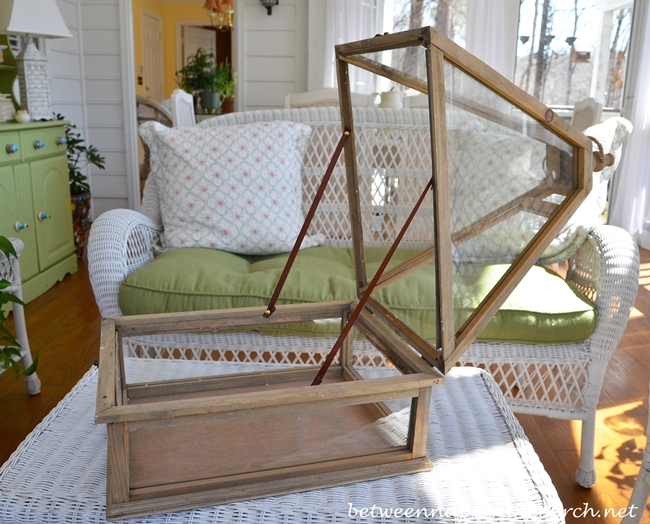 Wonderful Tabletop Greenhouse Or Terrarium
